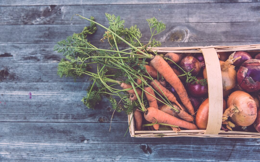 Modern Food Production, Human Health and Climate Change
